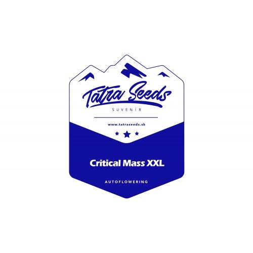 AUTO CRITICAL MASS XXL
