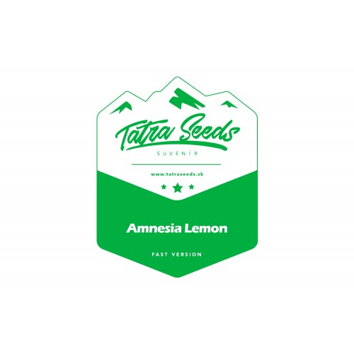 AMNESIA LEMON FAST VERSION